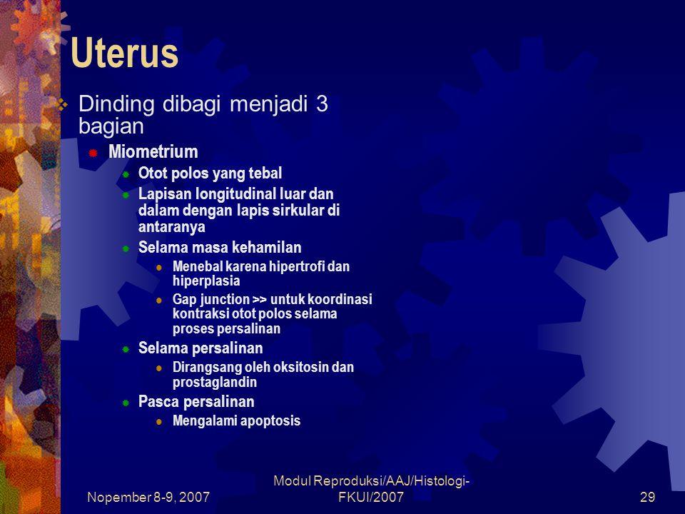 Nopember 8-9, 2007 Modul Reproduksi/AAJ/Histologi- FKUI/200729 Uterus  Dinding dibagi menjadi 3 bagian  Miometrium  Otot polos yang tebal  Lapisan longitudinal luar dan dalam dengan lapis sirkular di antaranya  Selama masa kehamilan Menebal karena hipertrofi dan hiperplasia Gap junction >> untuk koordinasi kontraksi otot polos selama proses persalinan  Selama persalinan Dirangsang oleh oksitosin dan prostaglandin  Pasca persalinan Mengalami apoptosis