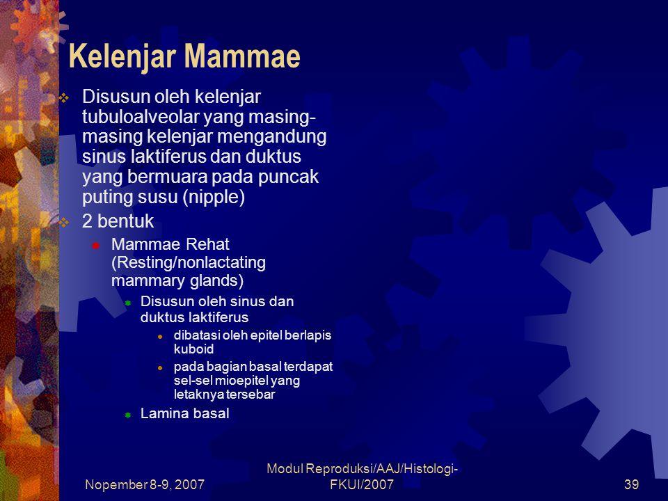 Nopember 8-9, 2007 Modul Reproduksi/AAJ/Histologi- FKUI/200739 Kelenjar Mammae  Disusun oleh kelenjar tubuloalveolar yang masing- masing kelenjar mengandung sinus laktiferus dan duktus yang bermuara pada puncak puting susu (nipple)  2 bentuk  Mammae Rehat (Resting/nonlactating mammary glands)  Disusun oleh sinus dan duktus laktiferus dibatasi oleh epitel berlapis kuboid pada bagian basal terdapat sel-sel mioepitel yang letaknya tersebar  Lamina basal