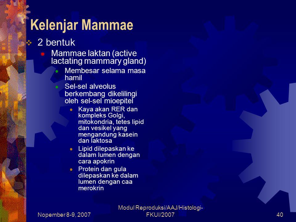 Nopember 8-9, 2007 Modul Reproduksi/AAJ/Histologi- FKUI/200740 Kelenjar Mammae  2 bentuk  Mammae laktan (active lactating mammary gland)  Membesar selama masa hamil  Sel-sel alveolus berkembang dikelilingi oleh sel-sel mioepitel Kaya akan RER dan kompleks Golgi, mitokondria, tetes lipid dan vesikel yang mengandung kasein dan laktosa Lipid dilepaskan ke dalam lumen dengan cara apokrin Protein dan gula dilepaskan ke dalam lumen dengan caa merokrin