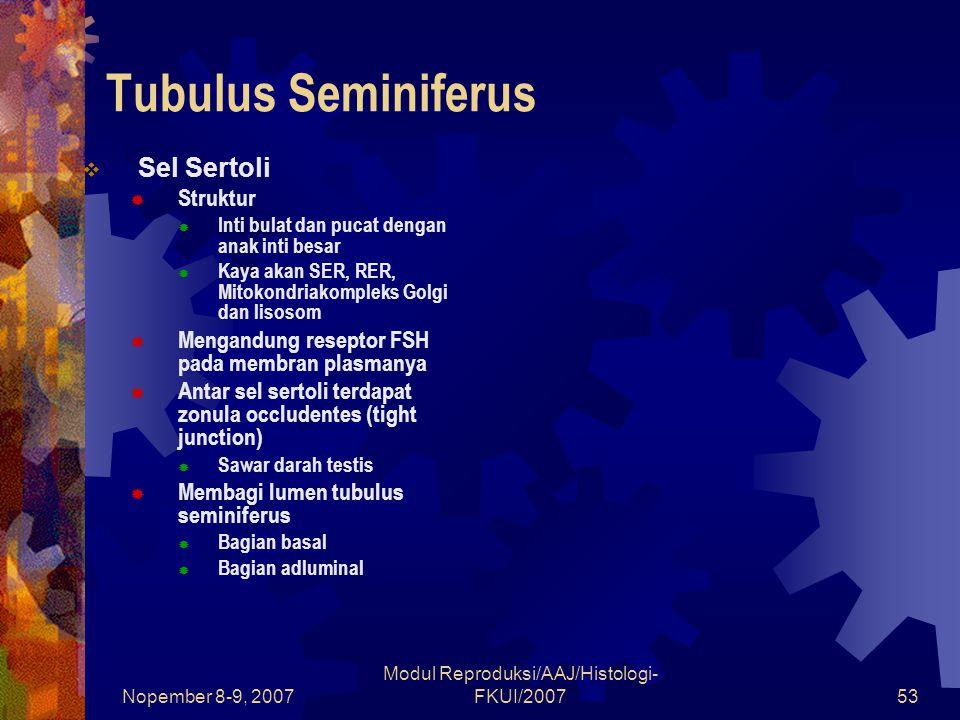 Nopember 8-9, 2007 Modul Reproduksi/AAJ/Histologi- FKUI/200753 Tubulus Seminiferus  Sel Sertoli  Struktur  Inti bulat dan pucat dengan anak inti be