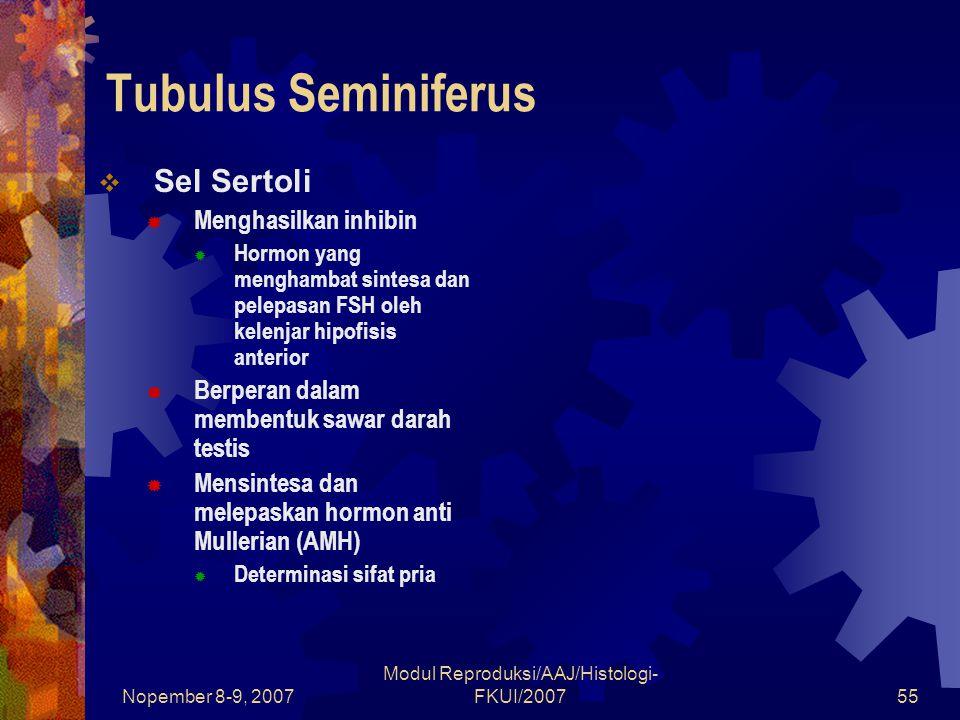 Nopember 8-9, 2007 Modul Reproduksi/AAJ/Histologi- FKUI/200755 Tubulus Seminiferus  Sel Sertoli  Menghasilkan inhibin  Hormon yang menghambat sinte