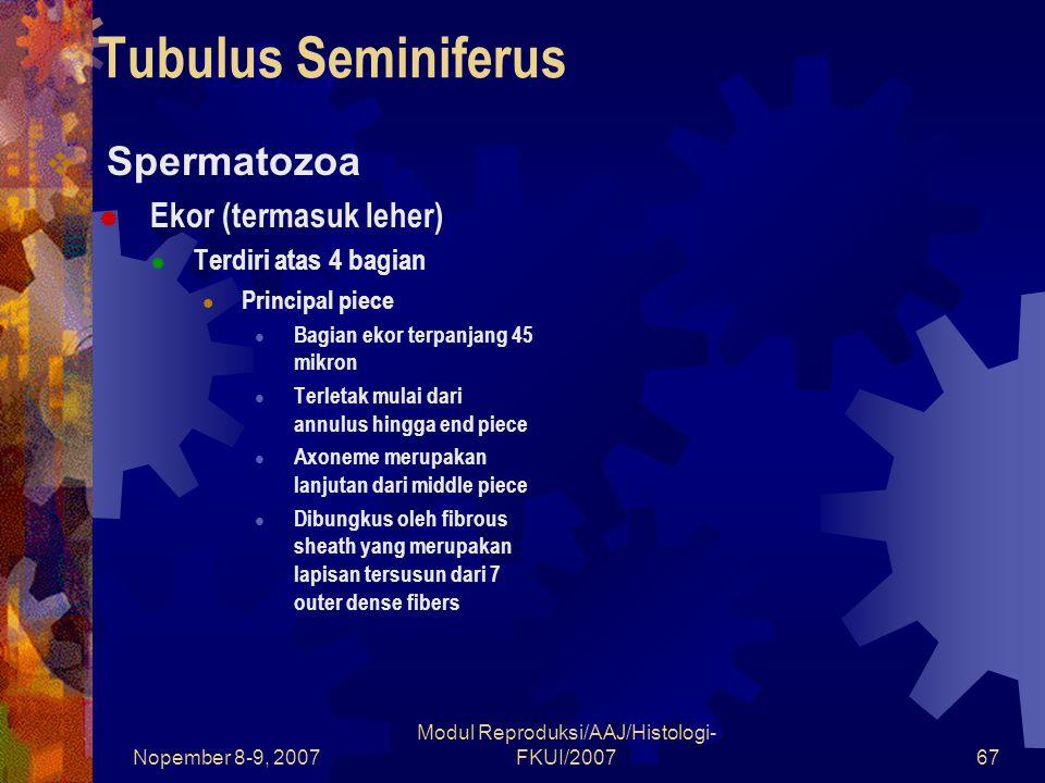 Nopember 8-9, 2007 Modul Reproduksi/AAJ/Histologi- FKUI/200767 Tubulus Seminiferus  Spermatozoa  Ekor (termasuk leher)  Terdiri atas 4 bagian Principal piece Bagian ekor terpanjang 45 mikron Terletak mulai dari annulus hingga end piece Axoneme merupakan lanjutan dari middle piece Dibungkus oleh fibrous sheath yang merupakan lapisan tersusun dari 7 outer dense fibers
