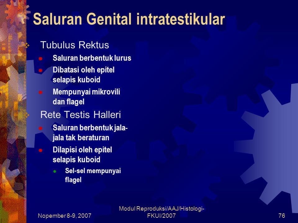 Nopember 8-9, 2007 Modul Reproduksi/AAJ/Histologi- FKUI/200777