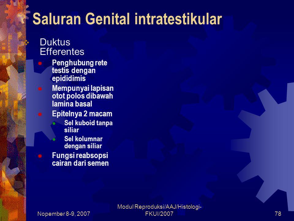 Nopember 8-9, 2007 Modul Reproduksi/AAJ/Histologi- FKUI/200779 Saluran Genital intratestikular  Duktus Epididmis  Dibentuk dari beberapa duktus efferentes  Mempunyai lapisan otot polos sirkular yang dapat berkontraksi membantu penyaluran sperma ke ductus vas deferens  Lumen dilapisi epitel bertingkat dengan 2 jenis sel  Sel-sel basal : sel prekursor untuk sel prisipal  Sel prinsipal : mengandung stereosilia