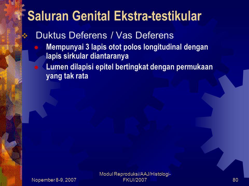 Nopember 8-9, 2007 Modul Reproduksi/AAJ/Histologi- FKUI/200780 Saluran Genital Ekstra-testikular  Duktus Deferens / Vas Deferens  Mempunyai 3 lapis