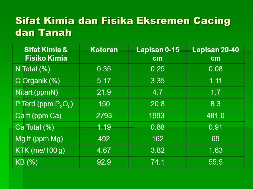 Sifat Kimia dan Fisika Eksremen Cacing dan Tanah Sifat Kimia & Fisiko Kimia KotoranLapisan 0-15 cm Lapisan 20-40 cm N Total (%)0.350.250.08 C Organik (%)5.173.351.11 Nitart (ppmN)21.94.71.7 P Terd (ppm P 2 O 5 )15020.88.3 Ca tt (ppm Ca)27931993.481.0 Ca Total (%)1.190.880.91 Mg tt (ppm Mg)49216269 KTK (me/100 g)4.673.821.63 KB (%)92.974.155.5
