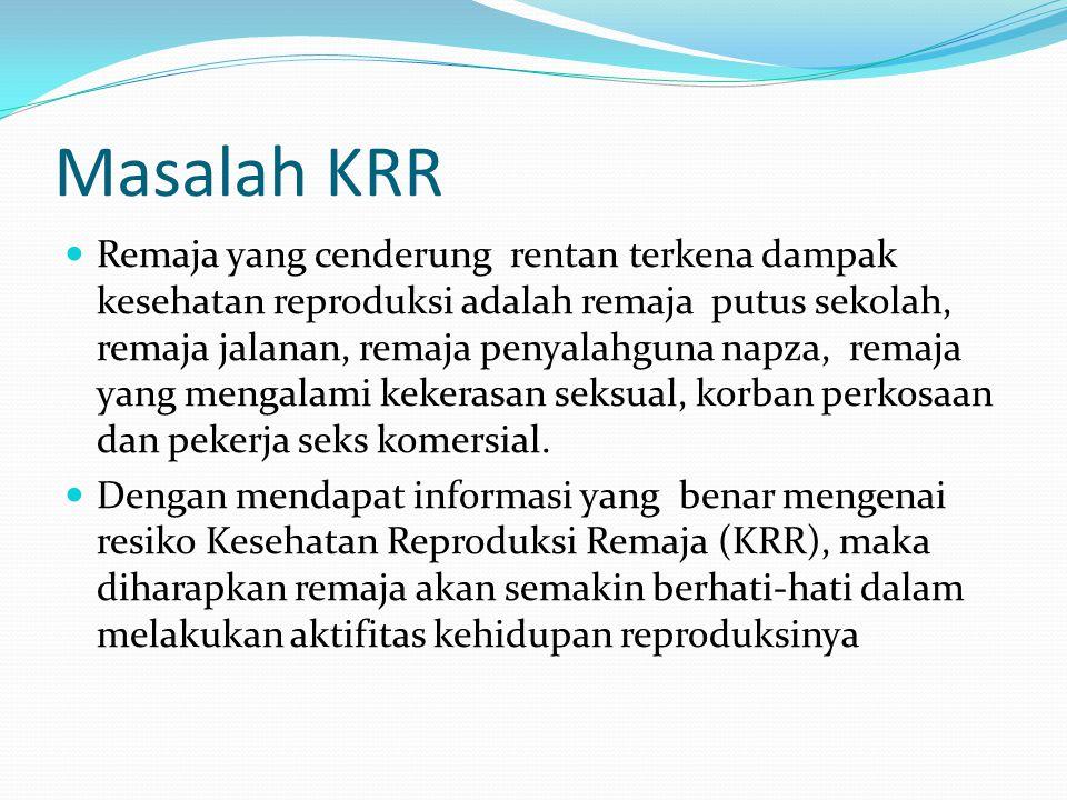 Masalah KRR Remaja yang cenderung rentan terkena dampak kesehatan reproduksi adalah remaja putus sekolah, remaja jalanan, remaja penyalahguna napza, r