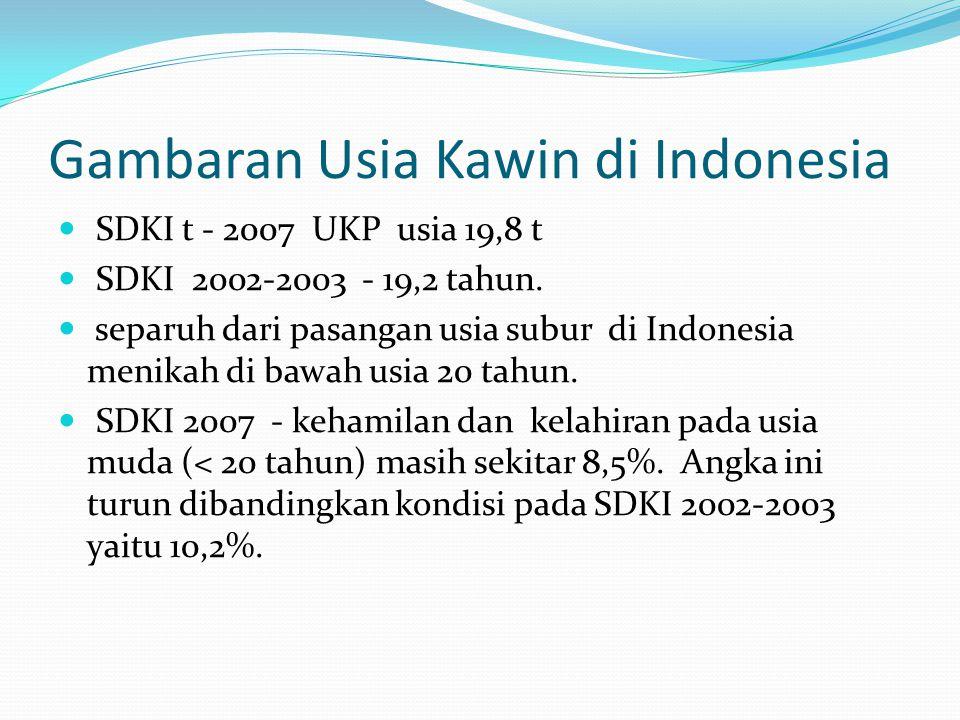 Gambaran Usia Kawin di Indonesia SDKI t - 2007 UKP usia 19,8 t SDKI 2002-2003 - 19,2 tahun. separuh dari pasangan usia subur di Indonesia menikah di b