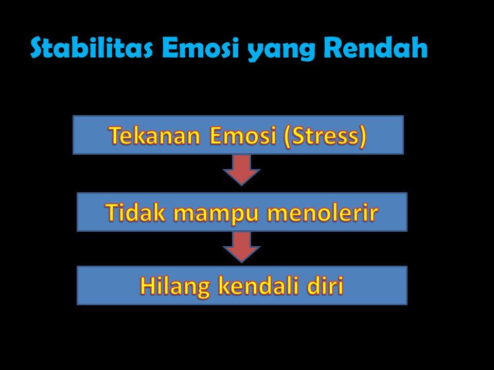 Stabilitas Emosi yang Rendah