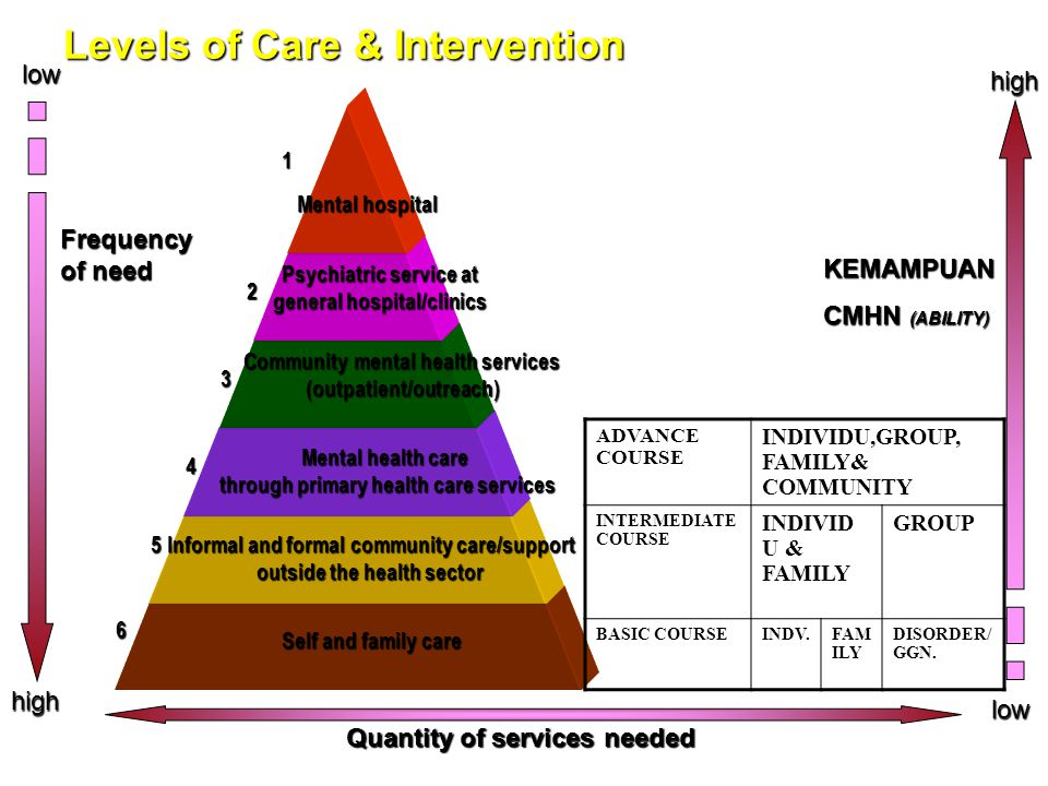 Levels of Care & Intervention Self and family care Informal and formal community care/support outside the health sector Mental health care through pri