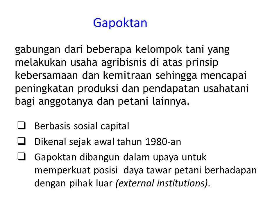 Gapoktan  Berbasis sosial capital  Dikenal sejak awal tahun 1980-an  Gapoktan dibangun dalam upaya untuk memperkuat posisi daya tawar petani berhadapan dengan pihak luar (external institutions).