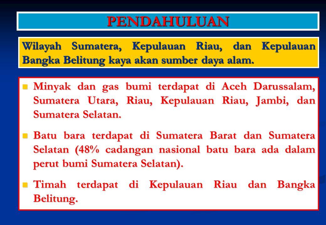 RENCANA AKSI NOAGENDAPENANGGUNG JAWABTIME FRAME 1 Palembang Iniciative Balitbangda Prov.