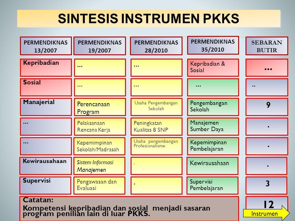 SINTESIS INSTRUMEN PKKS Kepribadian...Kepribadian & Sosial...