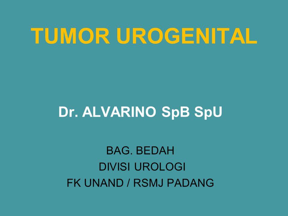 Tumor testis Epidemiologi: -1-2% tumor ganas pada pria -Umur 15 – 35 th.