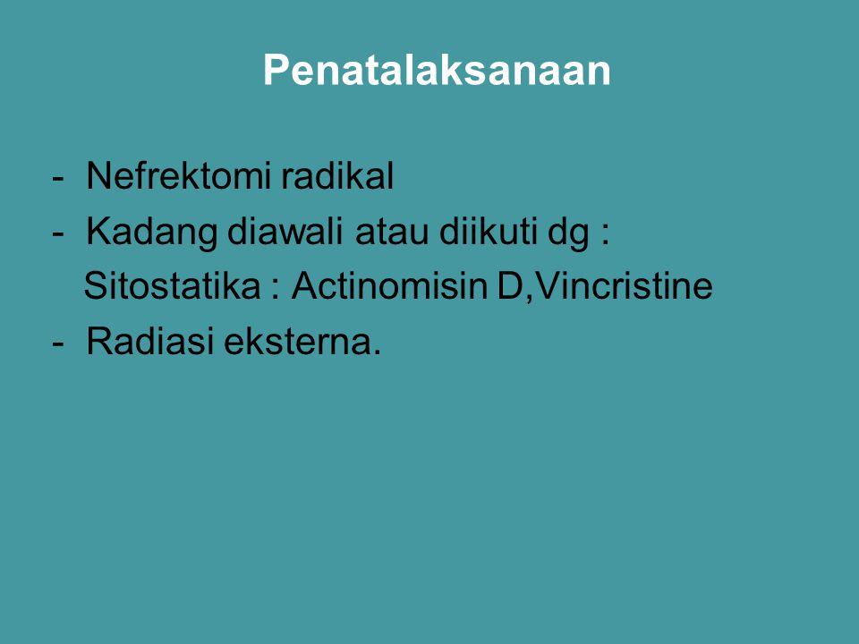 Penatalaksanaan - Nefrektomi radikal - Kadang diawali atau diikuti dg : Sitostatika : Actinomisin D,Vincristine - Radiasi eksterna.