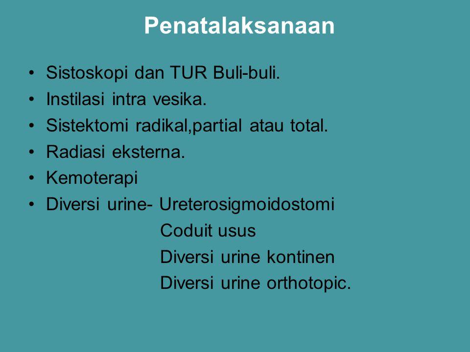 Penatalaksanaan Sistoskopi dan TUR Buli-buli. Instilasi intra vesika. Sistektomi radikal,partial atau total. Radiasi eksterna. Kemoterapi Diversi urin