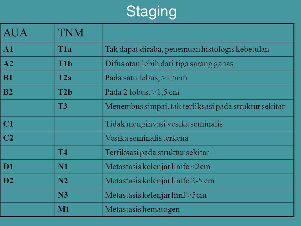 Staging AUATNM A1T1aTak dapat diraba, penemuan histologis kebetulan A2T1bDifus atau lebih dari tiga sarang ganas B1T2aPada satu lobus, >1,5cm B2T2bPad