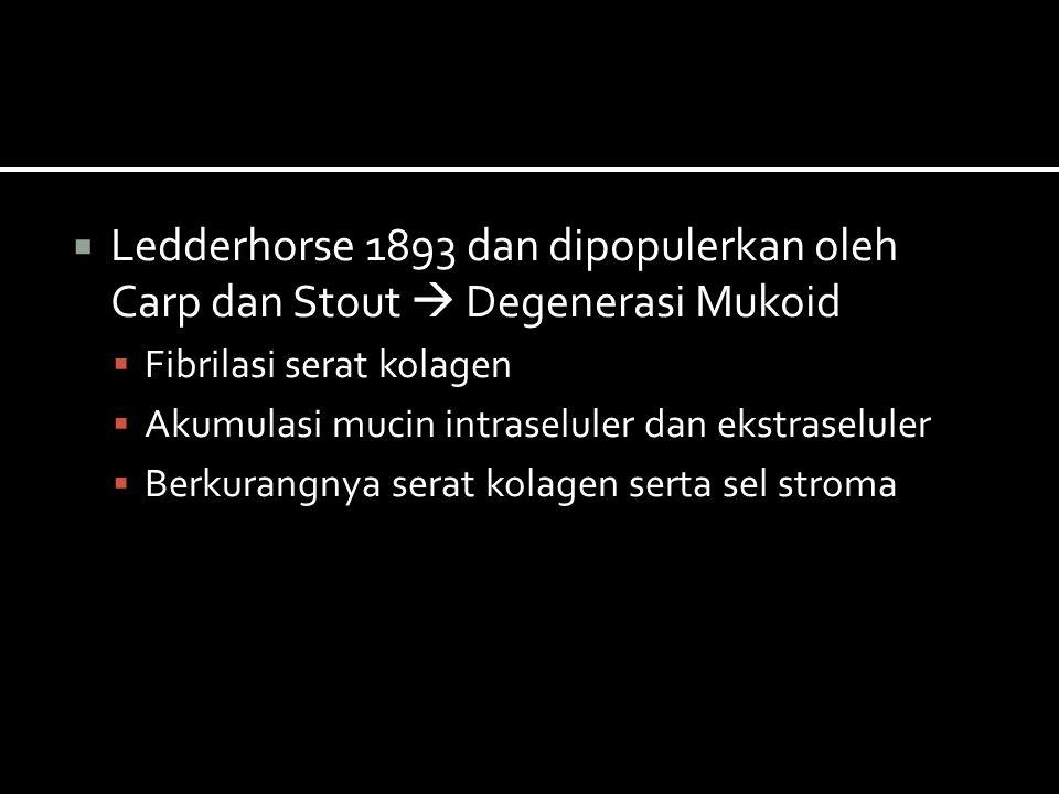  Ledderhorse 1893 dan dipopulerkan oleh Carp dan Stout  Degenerasi Mukoid  Fibrilasi serat kolagen  Akumulasi mucin intraseluler dan ekstraseluler