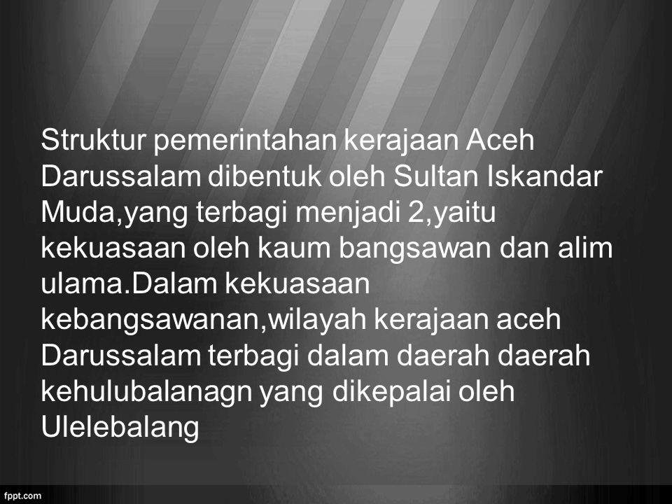 Struktur pemerintahan kerajaan Aceh Darussalam dibentuk oleh Sultan Iskandar Muda,yang terbagi menjadi 2,yaitu kekuasaan oleh kaum bangsawan dan alim