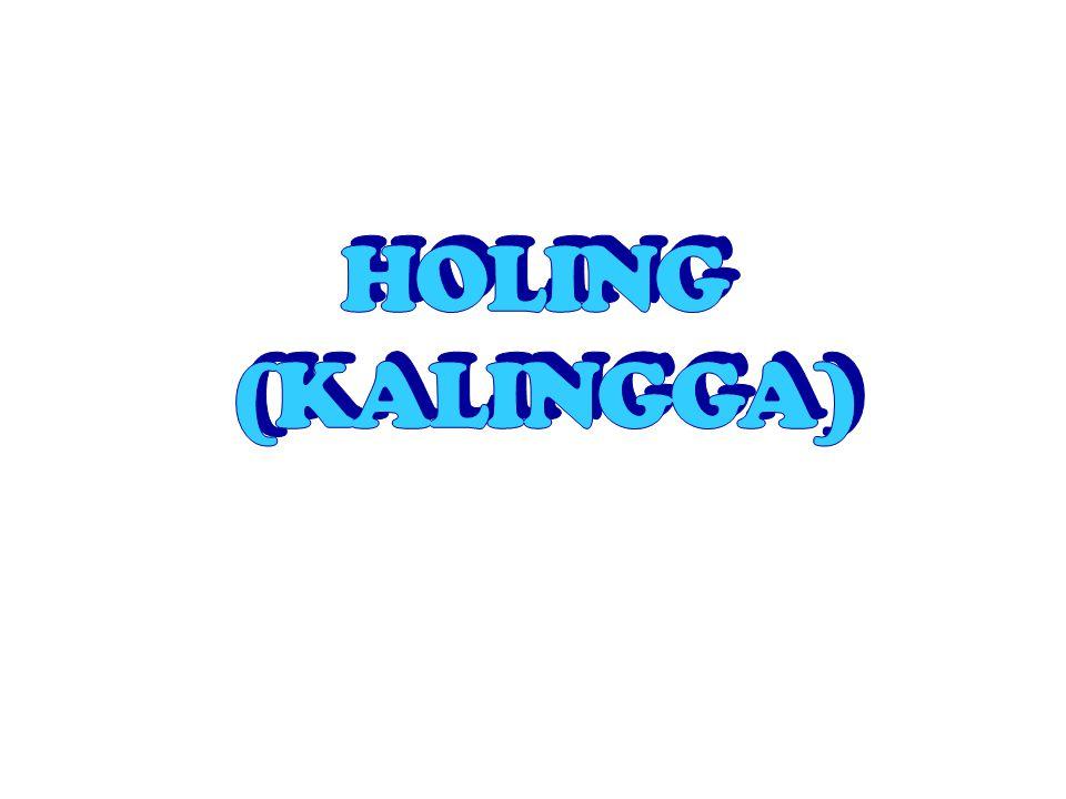 Berita dari Dinasti Tang (618-906), Holing terletak di pulau Laut Selatan ( kemudian diperkirakan terletak di Gunung Muria Jawa Tengah) Raja Raja yang terkenal Ratu Sima memerintah 674.