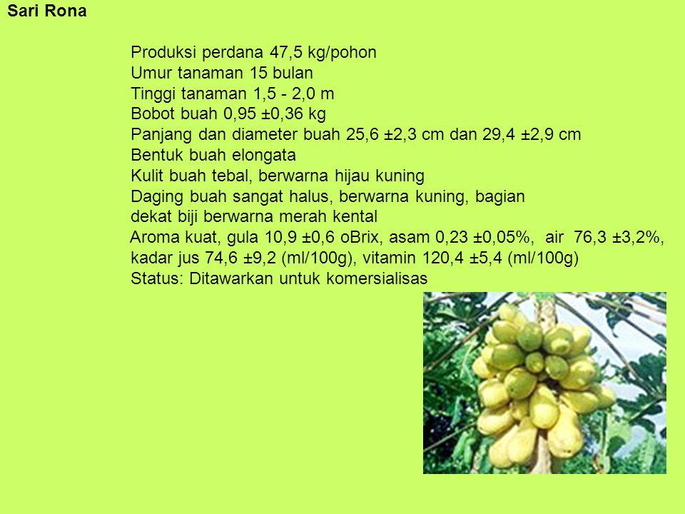 Sari Rona Produksi perdana 47,5 kg/pohon Umur tanaman 15 bulan Tinggi tanaman 1,5 - 2,0 m Bobot buah 0,95 ±0,36 kg Panjang dan diameter buah 25,6 ±2,3 cm dan 29,4 ±2,9 cm Bentuk buah elongata Kulit buah tebal, berwarna hijau kuning Daging buah sangat halus, berwarna kuning, bagian dekat biji berwarna merah kental Aroma kuat, gula 10,9 ±0,6 oBrix, asam 0,23 ±0,05%, air 76,3 ±3,2%, kadar jus 74,6 ±9,2 (ml/100g), vitamin 120,4 ±5,4 (ml/100g) Status: Ditawarkan untuk komersialisas