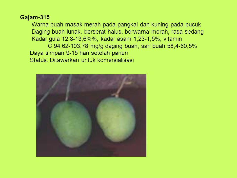 Sari-243 Produksi 67,5 kg/pohon Umur panen 86 hari setelah pembungaan Berat buah 354-610 gram Buah masak warna kuning kehijauan pada pangkal dan hijau tua di pucuk buah Daging buah tebal, kenyal, berserat kasar, warna kuning, asam dan getir Kadar gula 9,3-10,7%, kadar asam 0,35%, vitamin C 65,43 mg/g daging buah, sari buah 60,5-62,3% Daya simpan 12 hari setelah panen Status: Dalam tahap komersialisasi oleh PT.