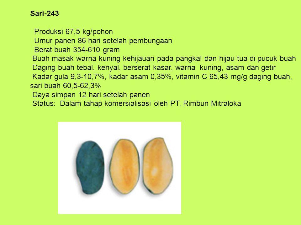 Sari-243 Produksi 67,5 kg/pohon Umur panen 86 hari setelah pembungaan Berat buah 354-610 gram Buah masak warna kuning kehijauan pada pangkal dan hijau