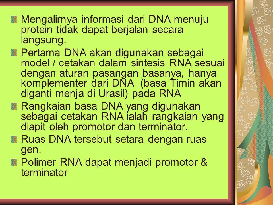 Mengalirnya informasi dari DNA menuju protein tidak dapat berjalan secara langsung. Pertama DNA akan digunakan sebagai model / cetakan dalam sintesis