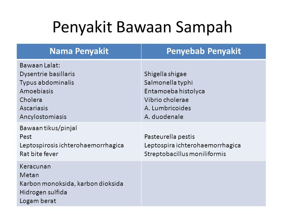 Penyakit Bawaan Sampah Nama PenyakitPenyebab Penyakit Bawaan Lalat: Dysentrie basillaris Typus abdominalis Amoebiasis Cholera Ascariasis Ancylostomias