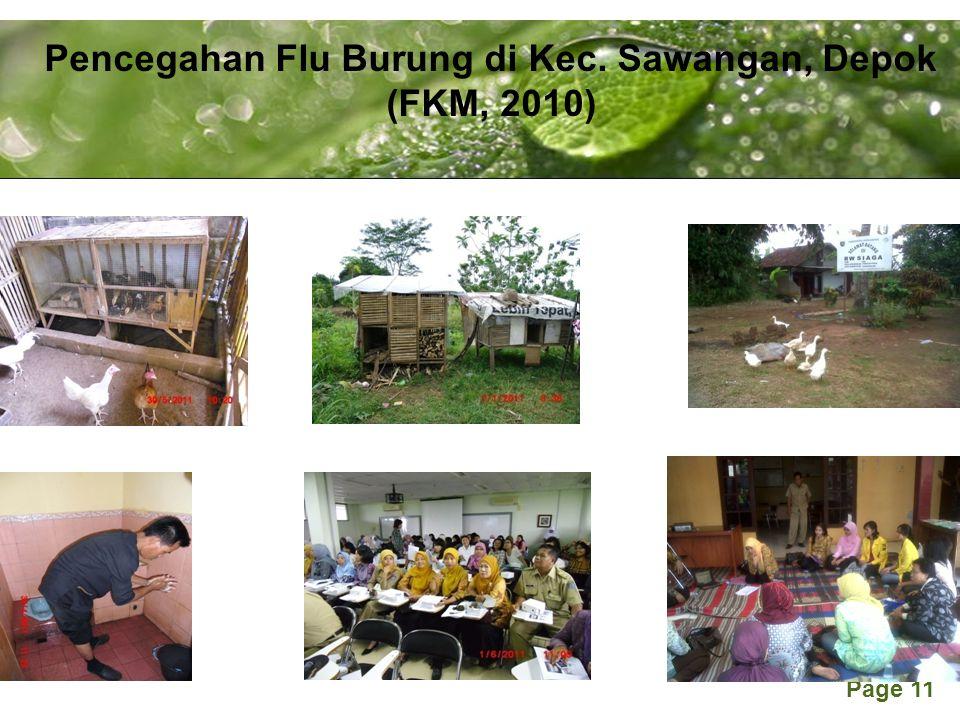 Powerpoint Templates Page 11 Pencegahan Flu Burung di Kec. Sawangan, Depok (FKM, 2010)
