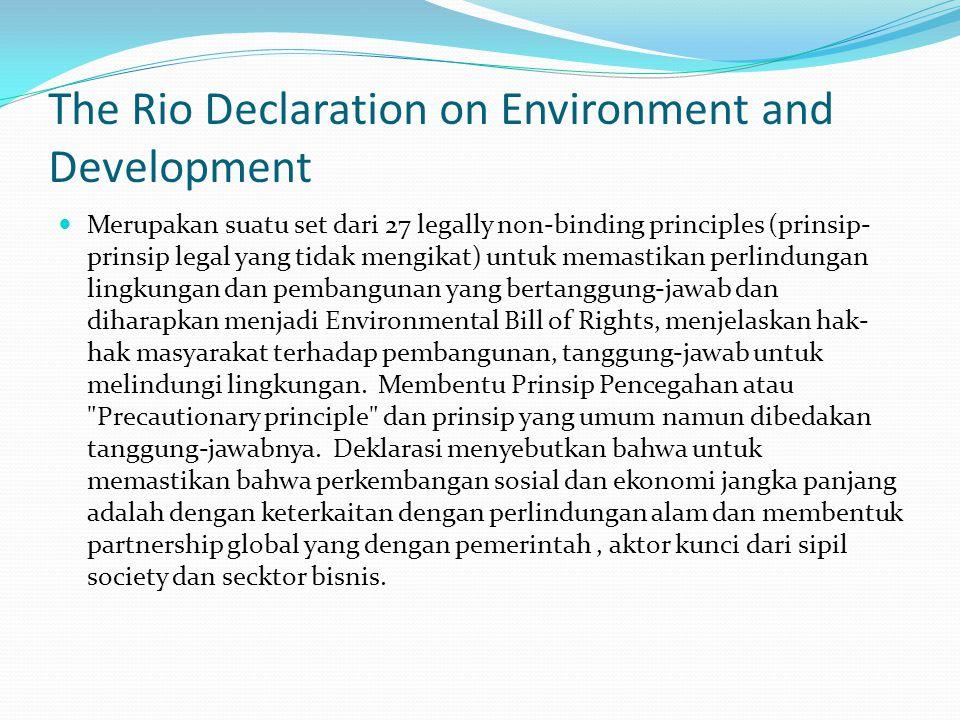The Rio Declaration on Environment and Development Merupakan suatu set dari 27 legally non-binding principles (prinsip- prinsip legal yang tidak mengikat) untuk memastikan perlindungan lingkungan dan pembangunan yang bertanggung-jawab dan diharapkan menjadi Environmental Bill of Rights, menjelaskan hak- hak masyarakat terhadap pembangunan, tanggung-jawab untuk melindungi lingkungan.