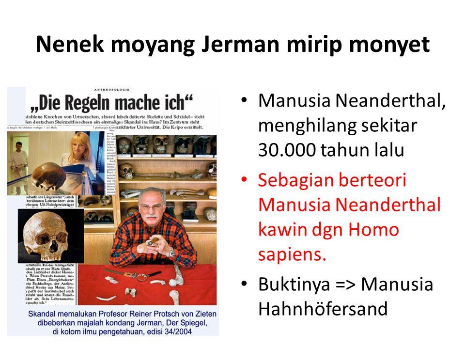 Nenek moyang Jerman mirip monyet Manusia Neanderthal, menghilang sekitar 30.000 tahun lalu Sebagian berteori Manusia Neanderthal kawin dgn Homo sapiens.