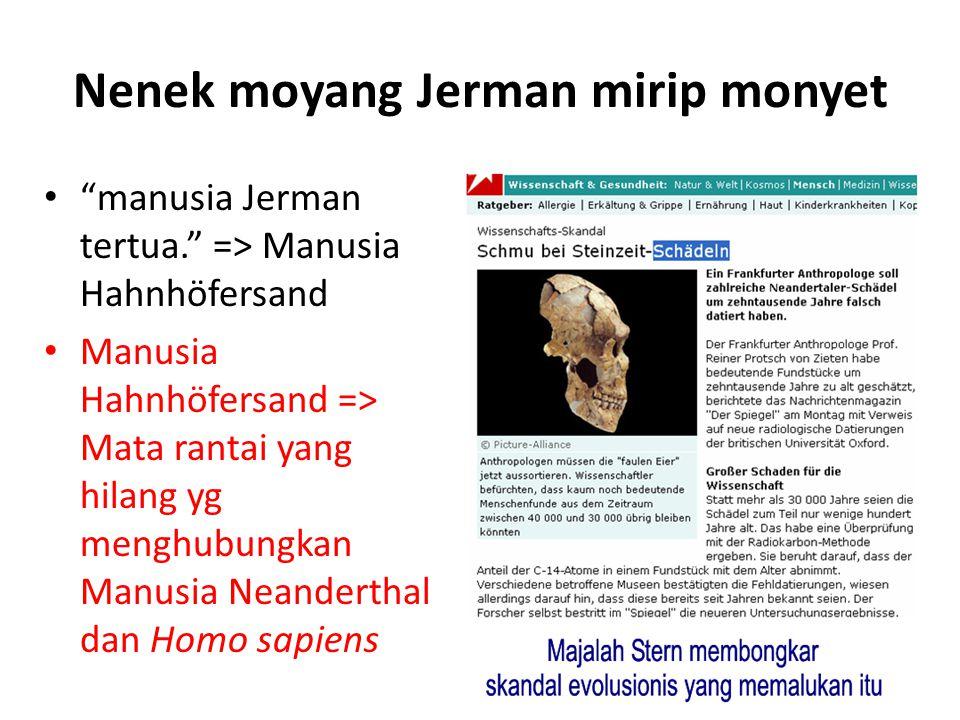 Nenek moyang Jerman mirip monyet manusia Jerman tertua. => Manusia Hahnhöfersand Manusia Hahnhöfersand => Mata rantai yang hilang yg menghubungkan Manusia Neanderthal dan Homo sapiens