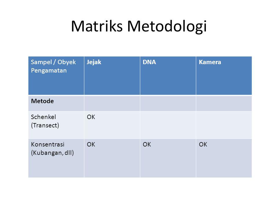 Matriks Metodologi Sampel / Obyek Pengamatan JejakDNAKamera Metode Schenkel (Transect) OK Konsentrasi (Kubangan, dll) OK