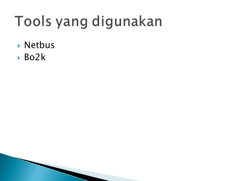  Netbus  Bo2k
