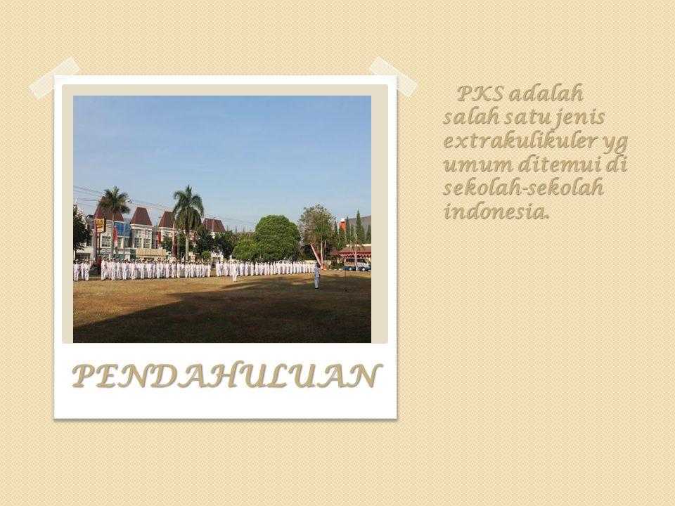 PKS adalah salah satu jenis extrakulikuler yg umum ditemui di sekolah-sekolah indonesia. PKS adalah salah satu jenis extrakulikuler yg umum ditemui di