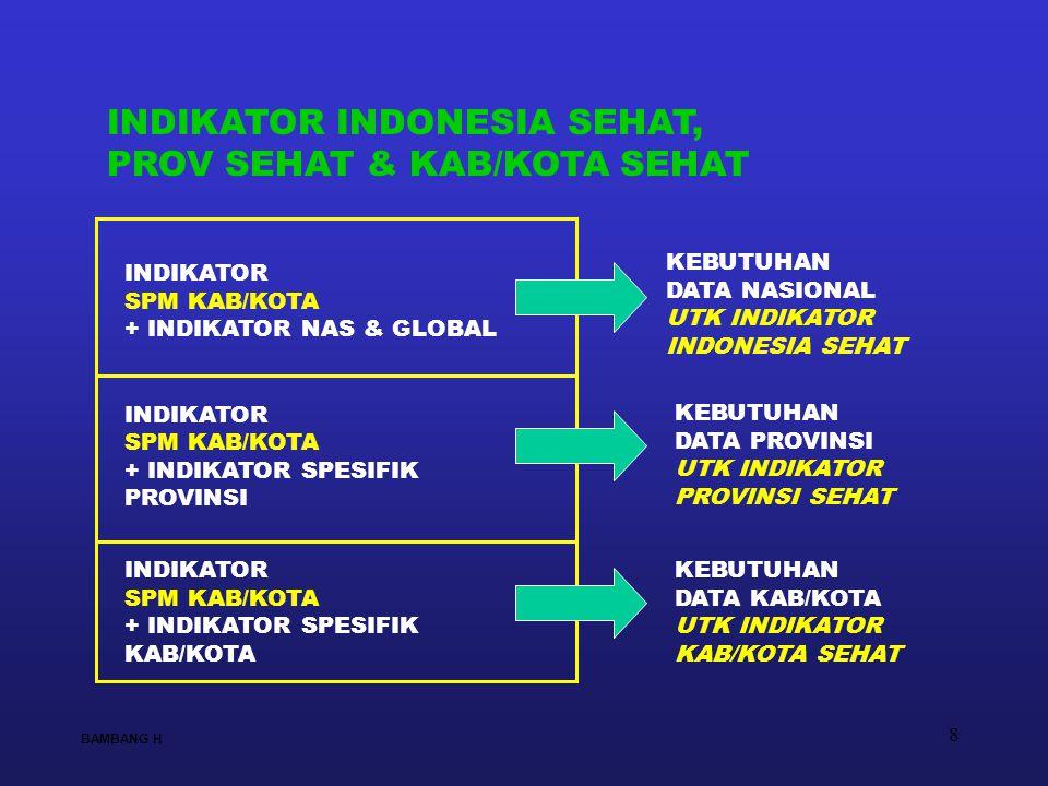 8 KEBUTUHAN DATA NASIONAL UTK INDIKATOR INDONESIA SEHAT KEBUTUHAN DATA PROVINSI UTK INDIKATOR PROVINSI SEHAT KEBUTUHAN DATA KAB/KOTA UTK INDIKATOR KAB
