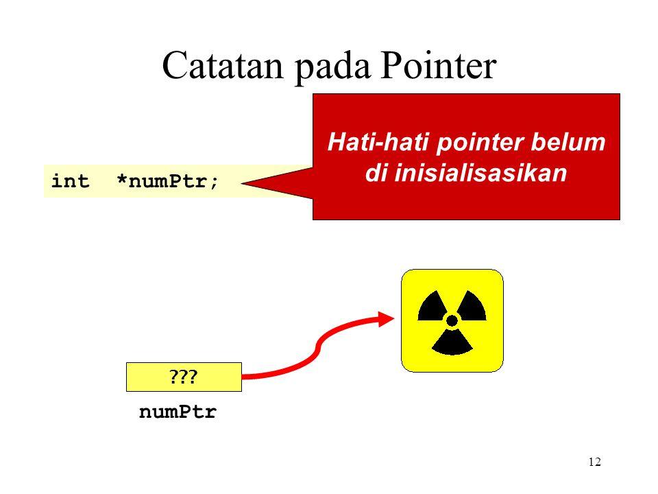 12 Catatan pada Pointer int *numPtr; Hati-hati pointer belum di inisialisasikan ??? numPtr
