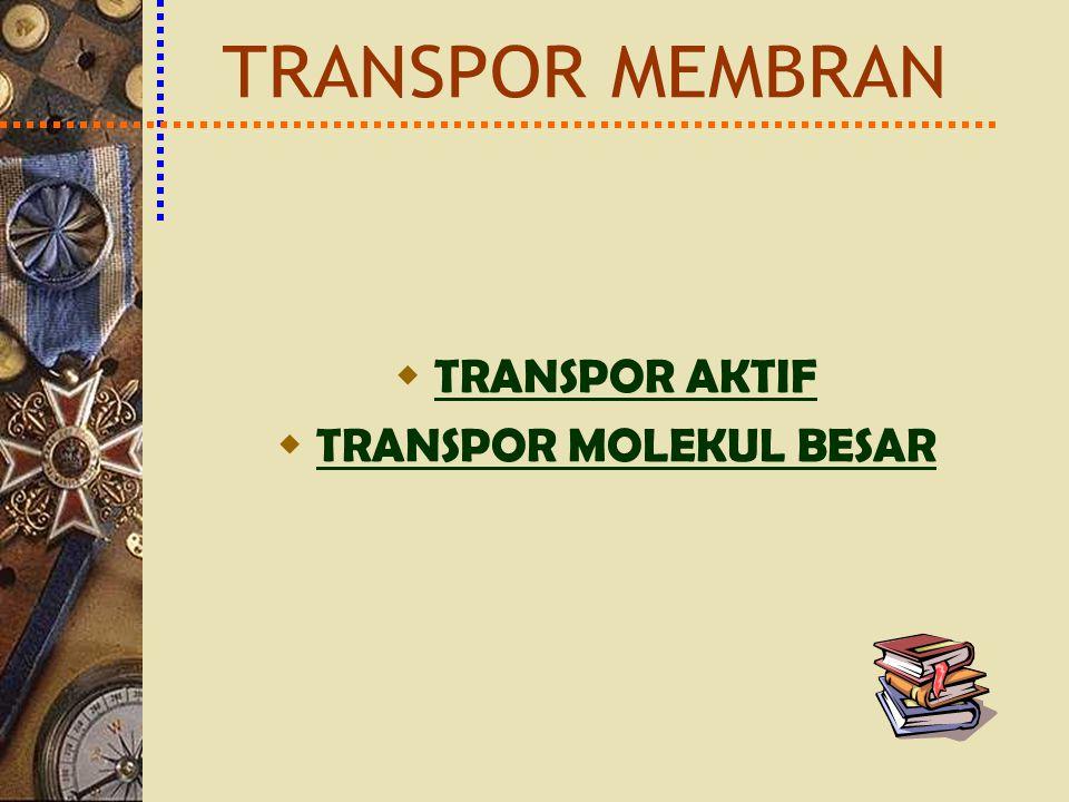 TRANSPOR AKTIF TRANSPOR AKTIF  TRANSPOR MOLEKUL BESAR TRANSPOR MOLEKUL BESAR