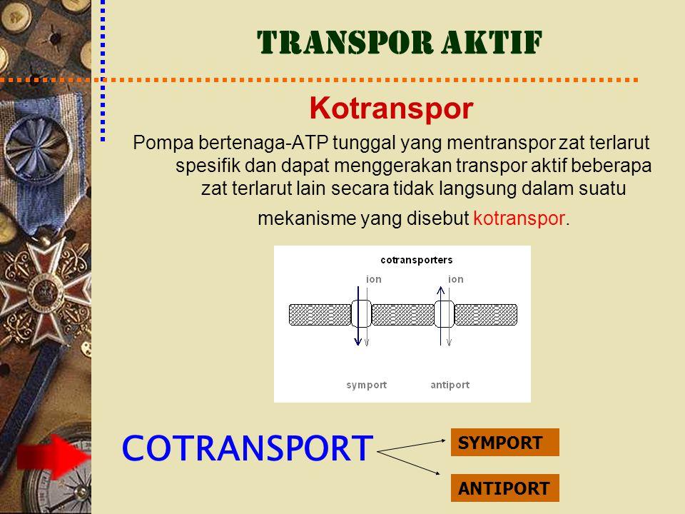 Kotranspor Pompa bertenaga-ATP tunggal yang mentranspor zat terlarut spesifik dan dapat menggerakan transpor aktif beberapa zat terlarut lain secara t