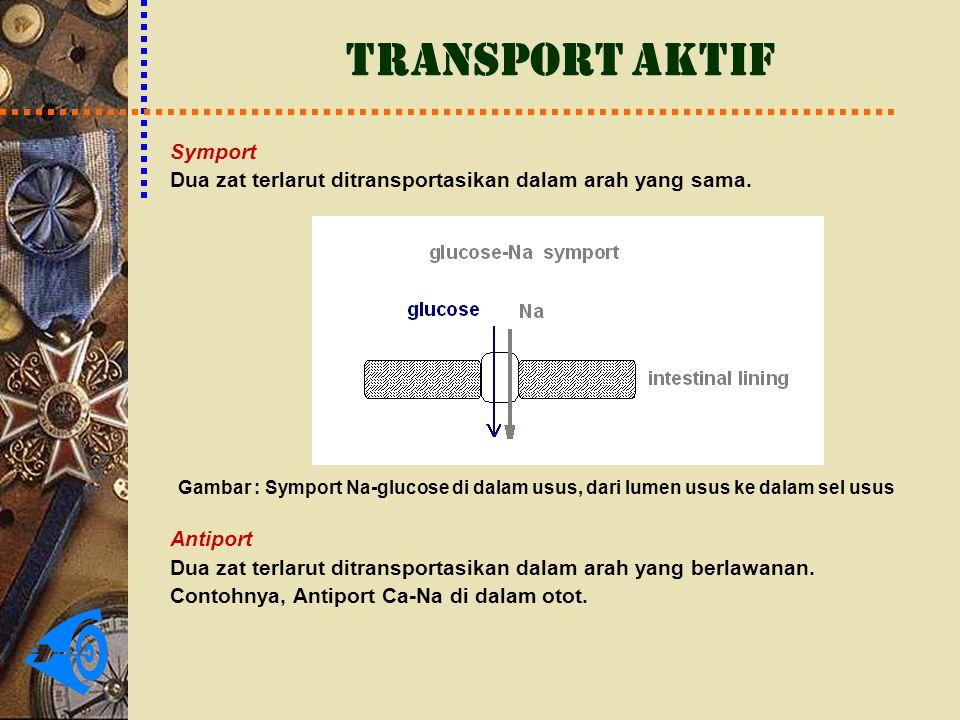 TRANSPORT AKTIF Symport Dua zat terlarut ditransportasikan dalam arah yang sama. Gambar : Symport Na-glucose di dalam usus, dari lumen usus ke dalam s