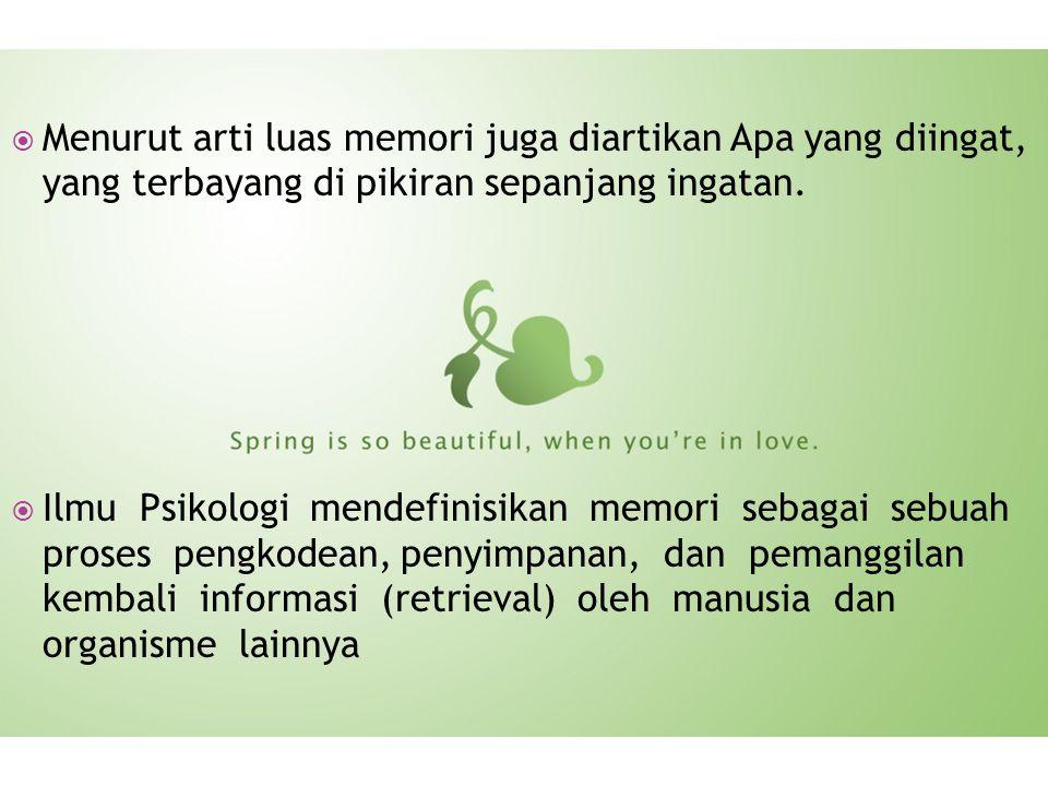  Menurut arti luas memori juga diartikan Apa yang diingat, yang terbayang di pikiran sepanjang ingatan.  Ilmu Psikologi mendefinisikan memori sebaga