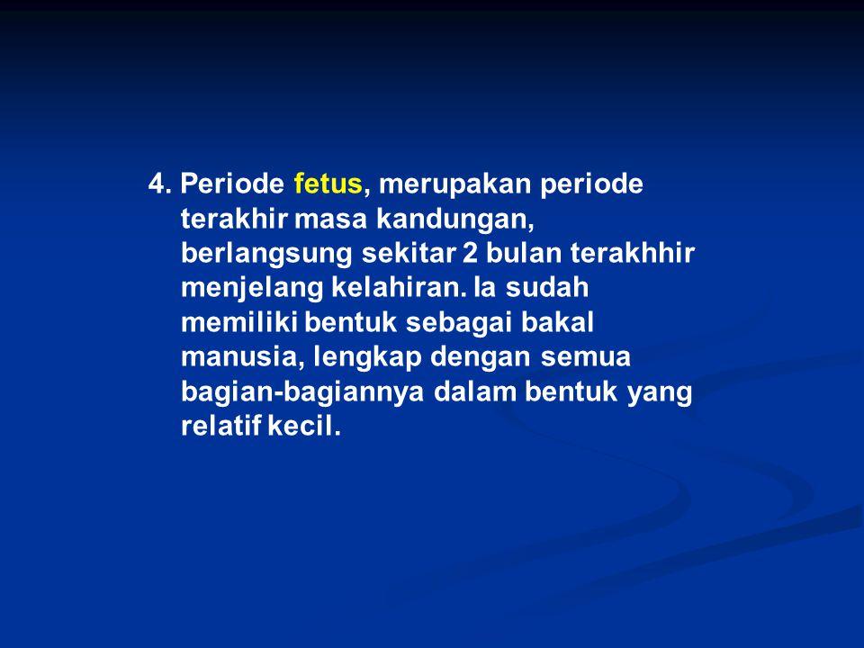4. Periode fetus, merupakan periode terakhir masa kandungan, berlangsung sekitar 2 bulan terakhhir menjelang kelahiran. Ia sudah memiliki bentuk sebag
