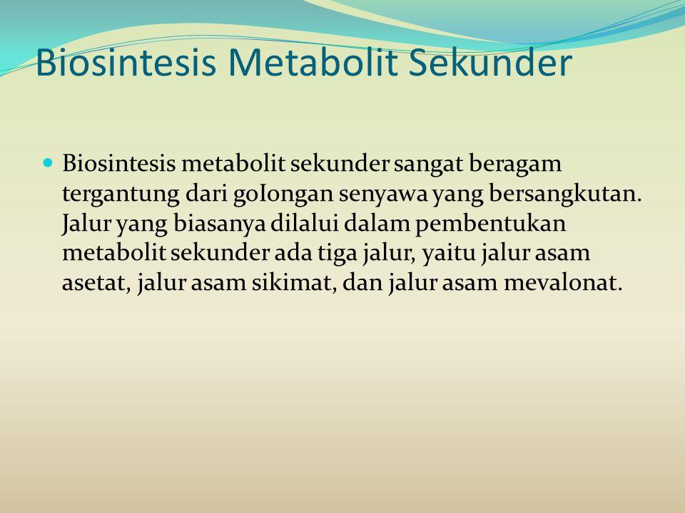 Biosintesis Metabolit Sekunder Biosintesis metabolit sekunder sangat beragam tergantung dari goIongan senyawa yang bersangkutan. Jalur yang biasanya d