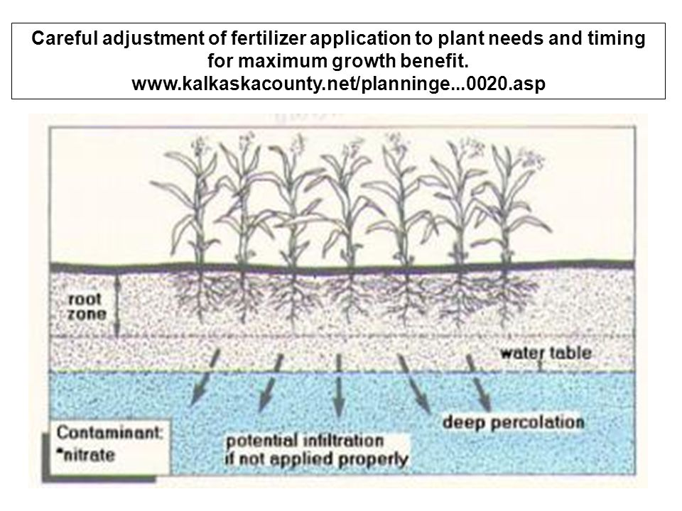 Careful adjustment of fertilizer application to plant needs and timing for maximum growth benefit. www.kalkaskacounty.net/planninge...0020.asp