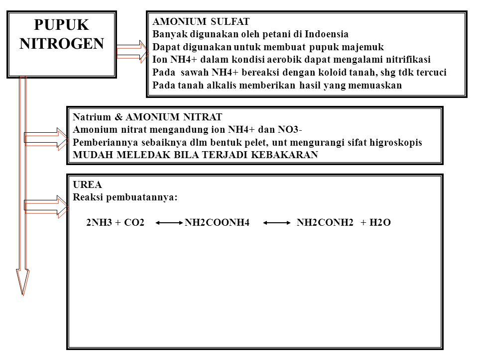 PUPUK NITROGEN AMONIUM SULFAT Banyak digunakan oleh petani di Indoensia Dapat digunakan untuk membuat pupuk majemuk Ion NH4+ dalam kondisi aerobik dapat mengalami nitrifikasi Pada sawah NH4+ bereaksi dengan koloid tanah, shg tdk tercuci Pada tanah alkalis memberikan hasil yang memuaskan Natrium & AMONIUM NITRAT Amonium nitrat mengandung ion NH4+ dan NO3- Pemberiannya sebaiknya dlm bentuk pelet, unt mengurangi sifat higroskopis MUDAH MELEDAK BILA TERJADI KEBAKARAN UREA Reaksi pembuatannya: 2NH3 + CO2 NH2COONH4 NH2CONH2 + H2O