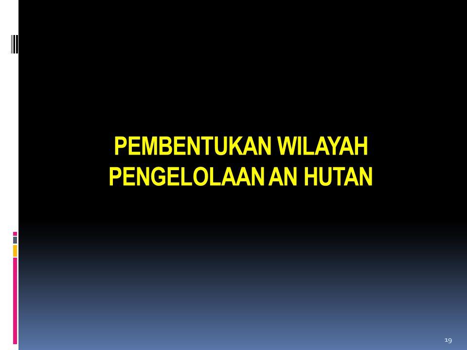PEMBENTUKAN WILAYAH PENGELOLAAN AN HUTAN 19