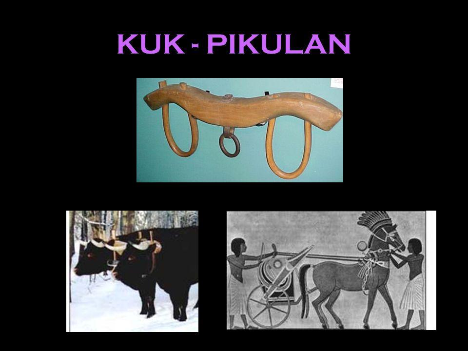 KUK - PIKULAN