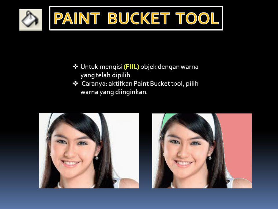  Untuk mengisi (FIIL) objek dengan warna yang telah dipilih.  Caranya: aktifkan Paint Bucket tool, pilih warna yang diinginkan.