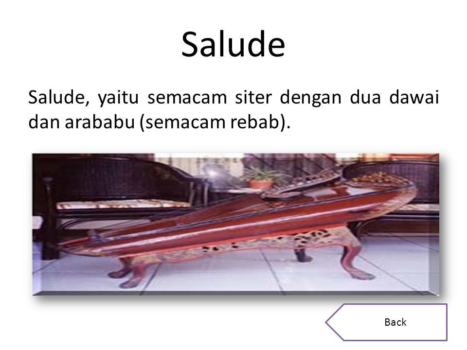 Salude Salude, yaitu semacam siter dengan dua dawai dan arababu (semacam rebab). Back
